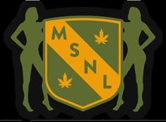MSNL review