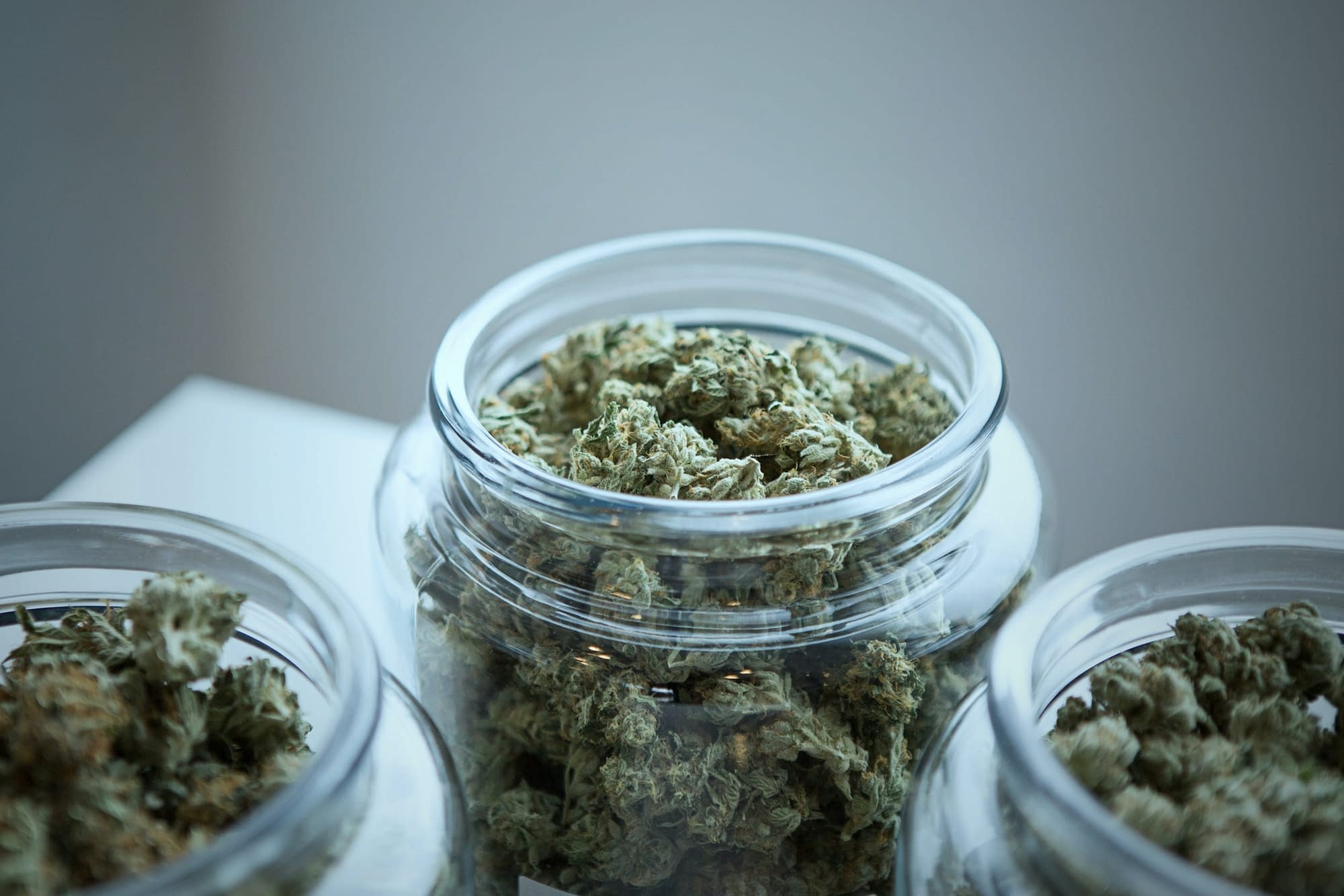 Cannabis buds being cured in a glass jar